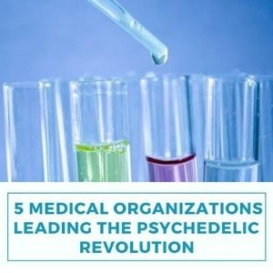 5 Medical Organizations Leading the Psychedelic Research Revolution